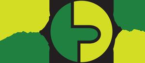 NaturPraxis LebenPuls Logo
