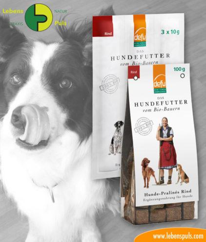 dafu BIO Hundesnacks Hundepralinen