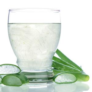 Auch Aloe Vera ist eine Unterstützung für die gesunde Ernährung