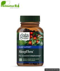 SLEEPTHRU von GAIA HERBS | kann den erholsamen Schlaf unterstützen | 60 Kapseln | Lieferung auf Anfrage