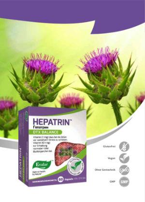 HEPATRIN™ VON EVALAR (Гепатрин). Glutenfrei, vegan, ohne Gentechnik, GMP.