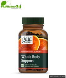 WHOLE BODY SUPPORT von Gaia Herbs | Reishi, Shiitake, Kurkuma und Ingwer für's tägliche Plus an Energie | Pilze, Vitalpilze & Kräuter | 60 Kapseln